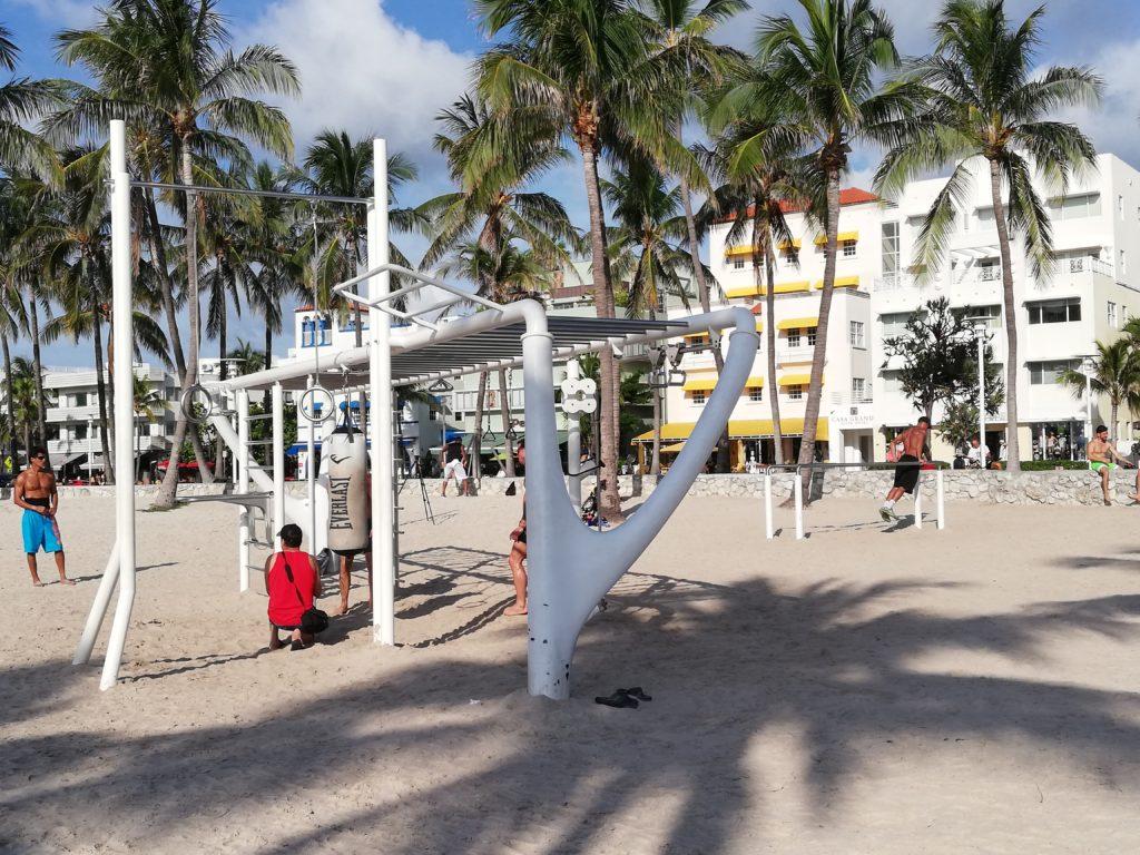 South Beach Global Gym Bunny