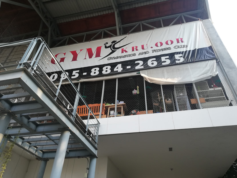 GYMkruoor Chiang Mai